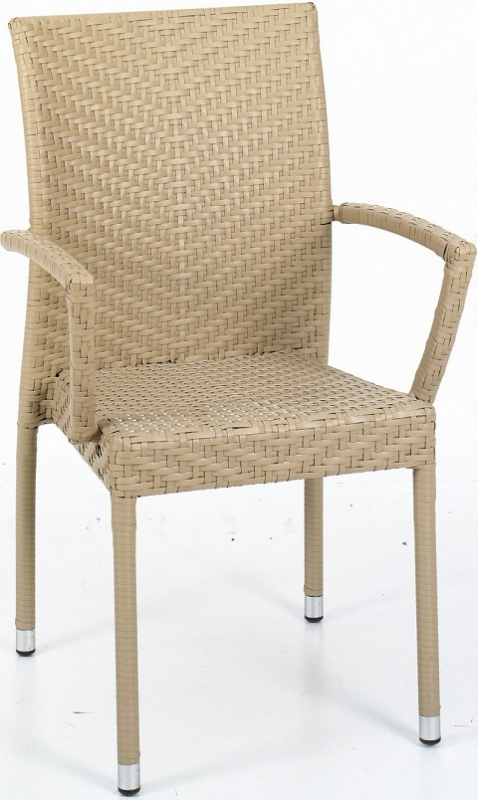 NEO-DS-121 Rattan Arm Chair H. Color